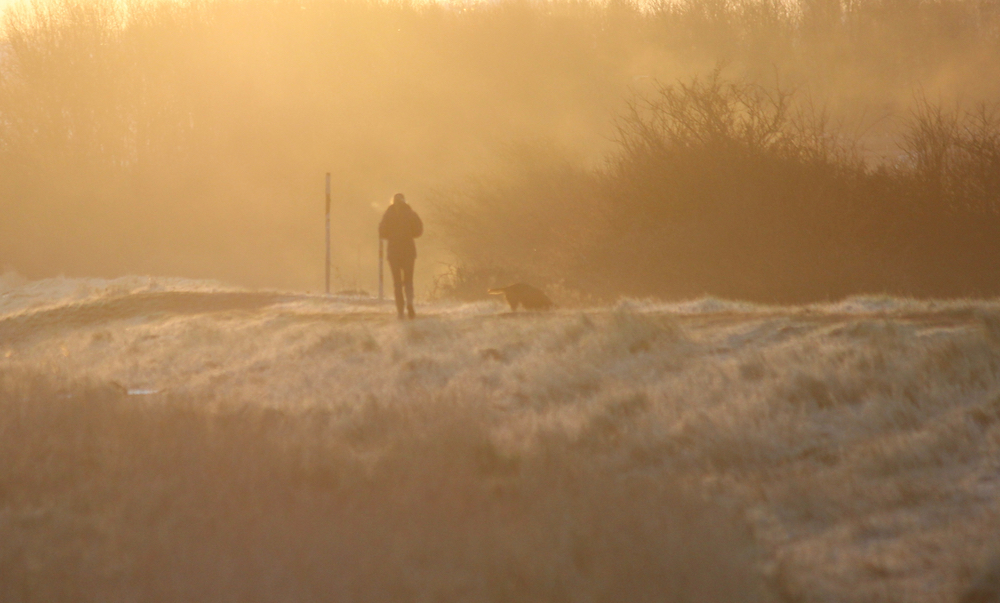 Walking the dog along the sea wall on a frosty morning